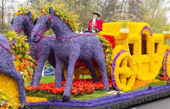 Весенняя выставка цветов в Голландии